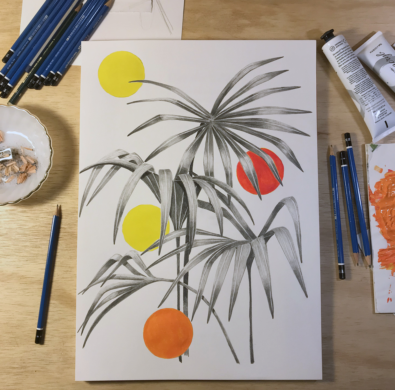 Kentia Palm Pop, 2018