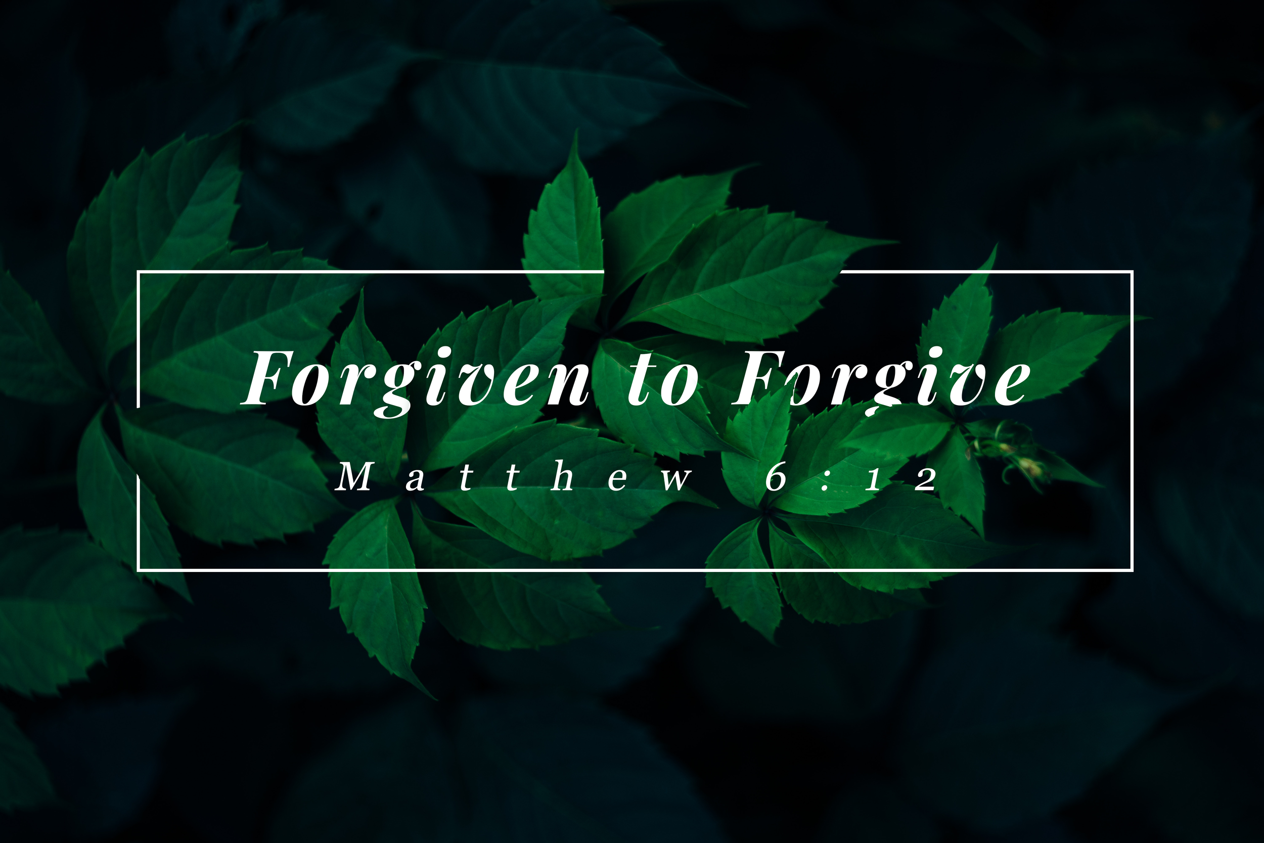 Forgiven to Forgive.png