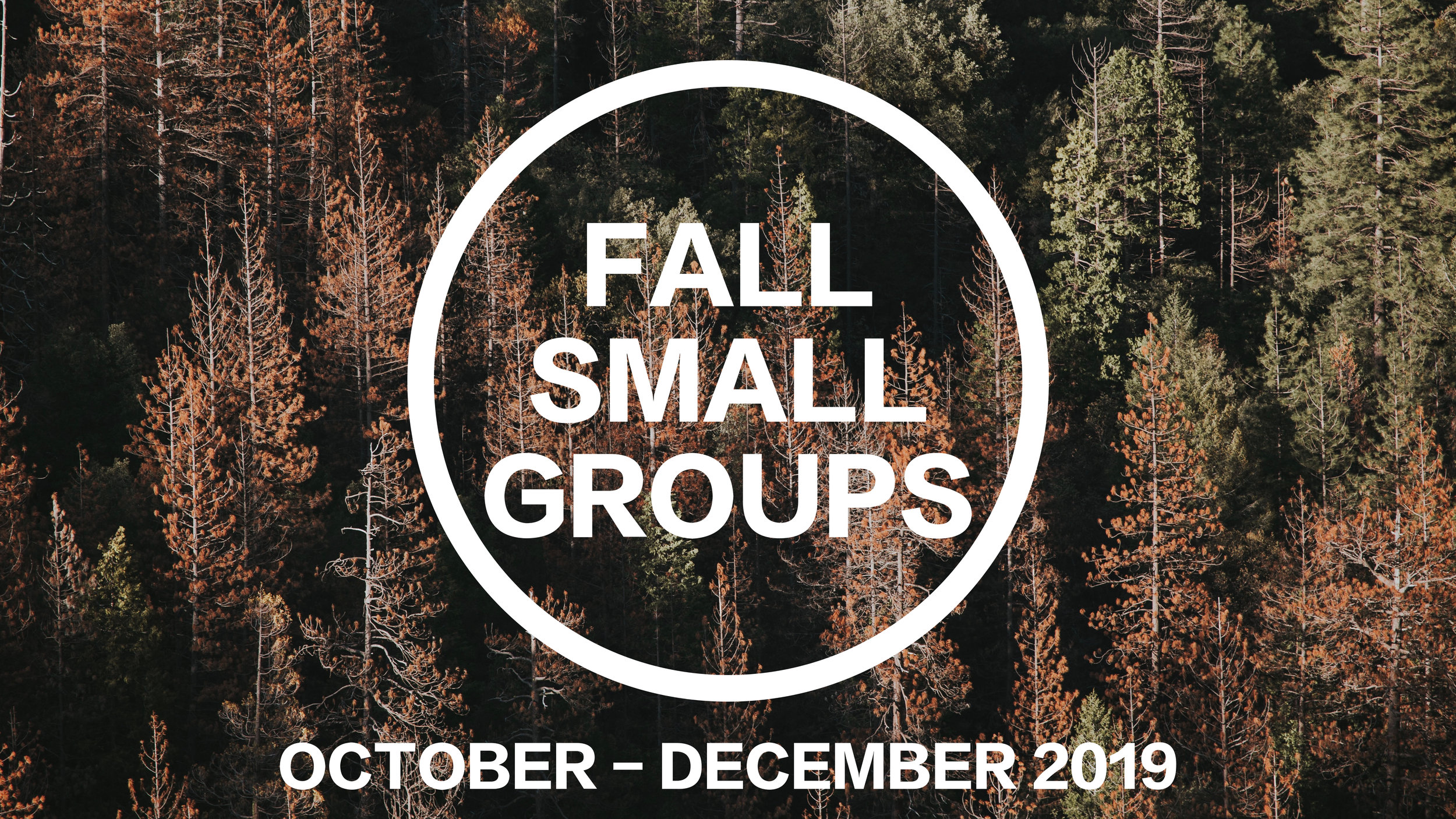 Fall SG Round.jpg