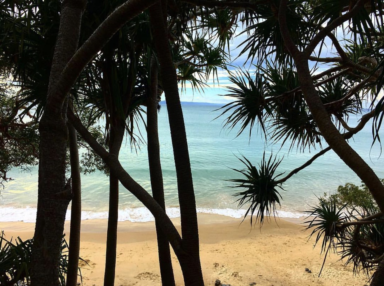 Views from the national park beach walk at Noosa Heads (a beautiful paradise).