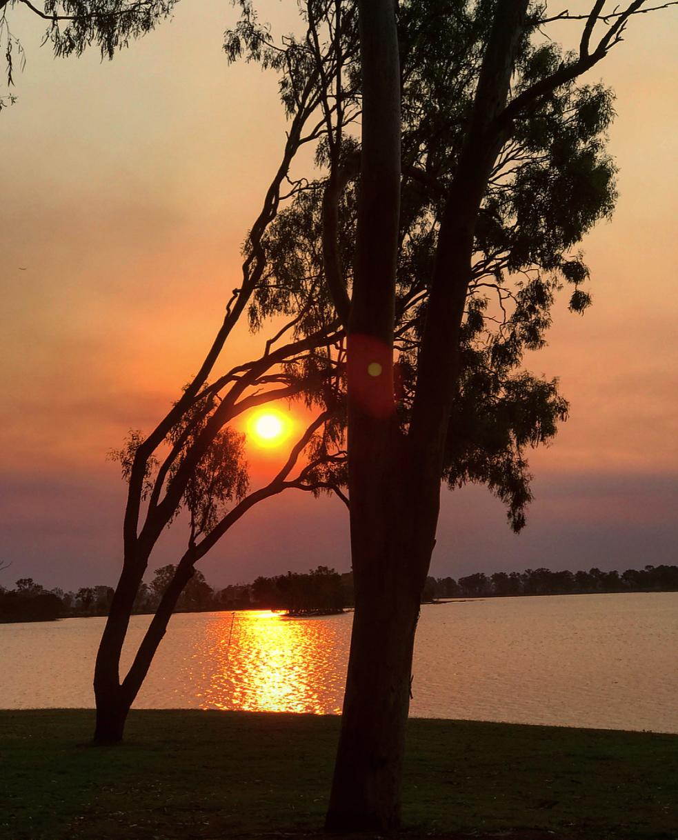 Watching the sun set at the Botanical Gardens (next to Rockhampton Zoo).