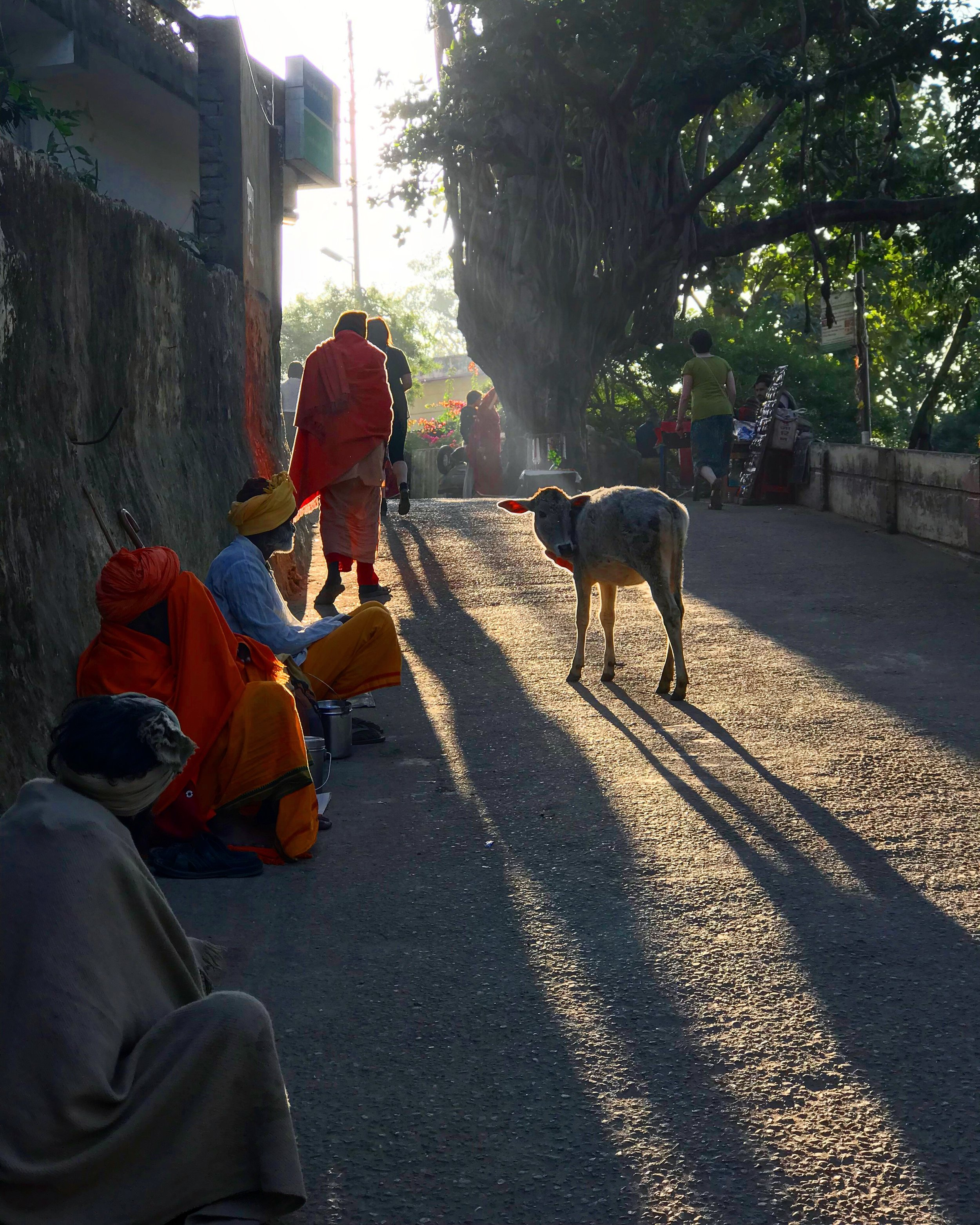 I love the light flooding down the street in this shot here with the Baba's peacefully sat on the streets.