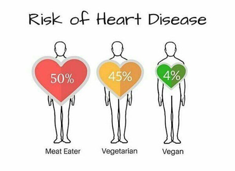 Go Vegan, improve your health and reduce the risk of developing heart disease, stroke and some cancers.