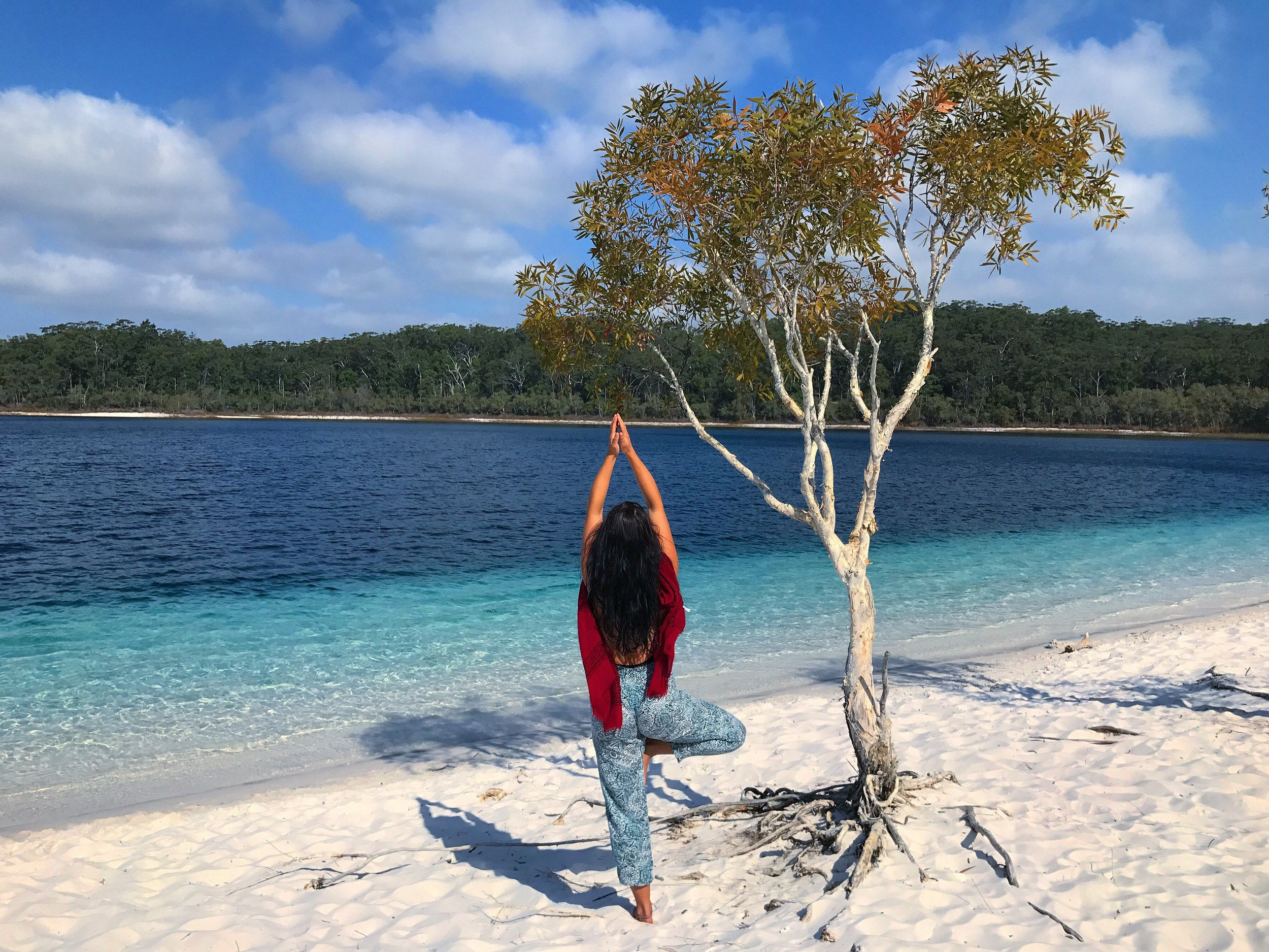 Tree pose at Fraser Island, Australia.