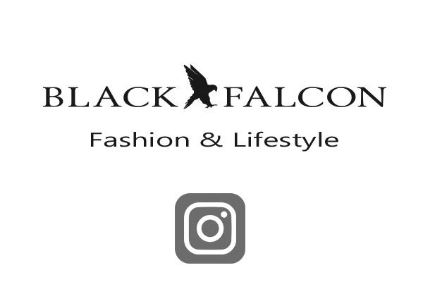 Medienagentur_Blum_BlackFalcon.jpg