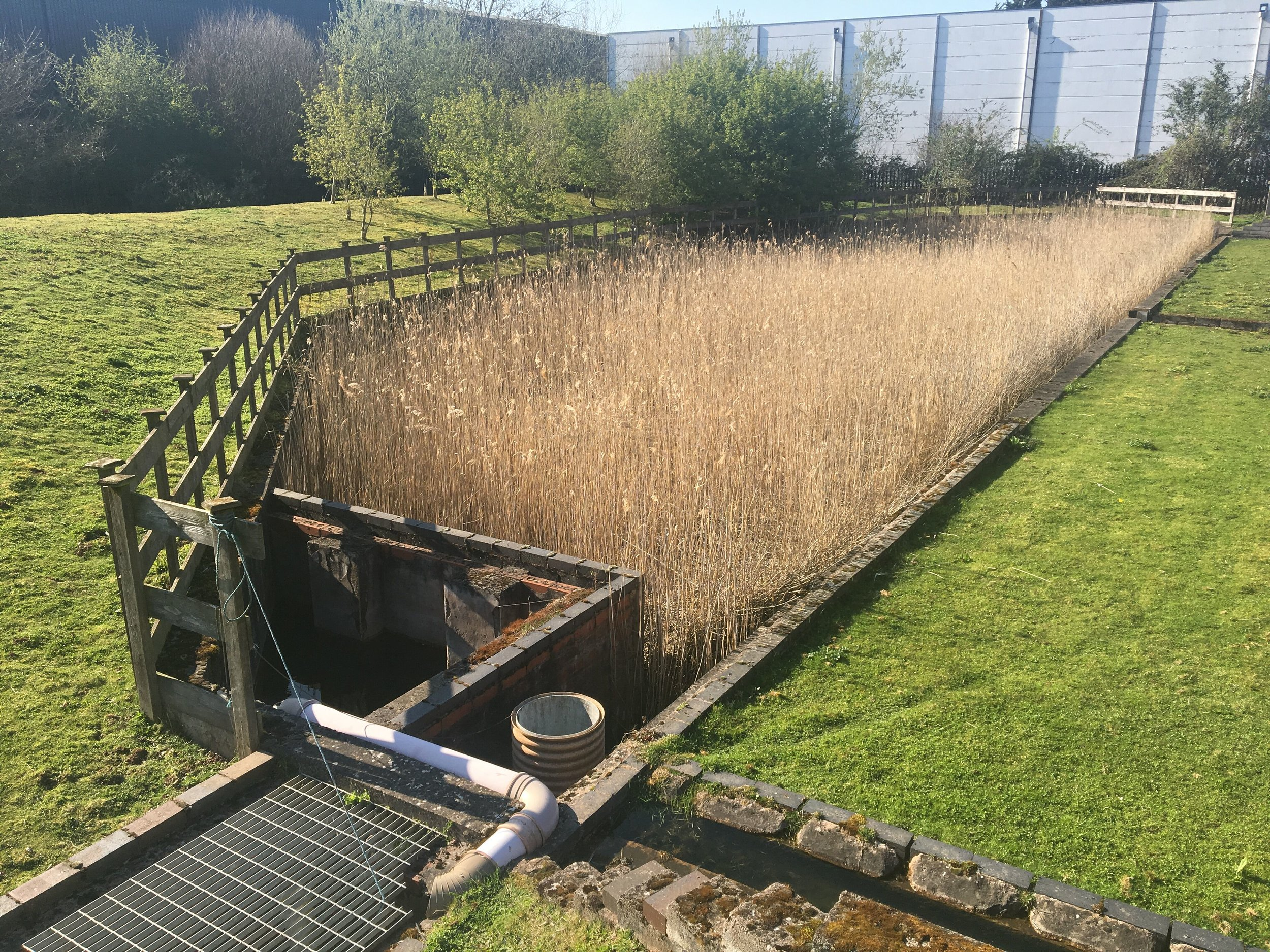 Watson Fuels Reed Bed at their Ledbury Depot