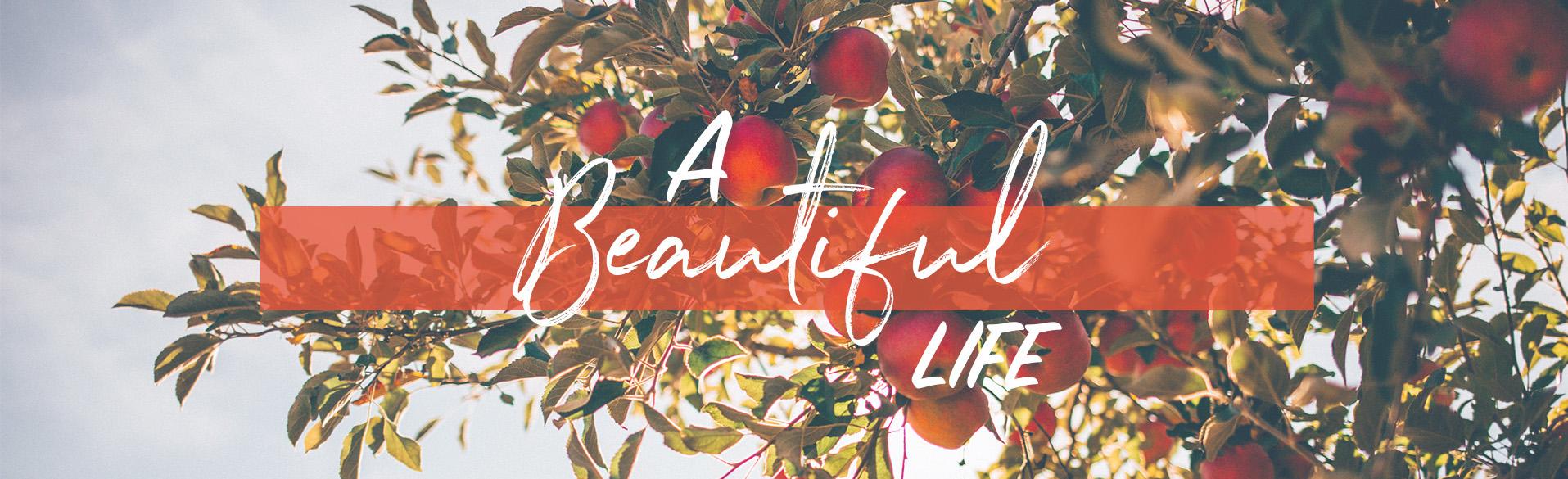 A Beautiful Life banner.jpeg