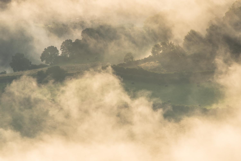 Misty LR 3.jpg