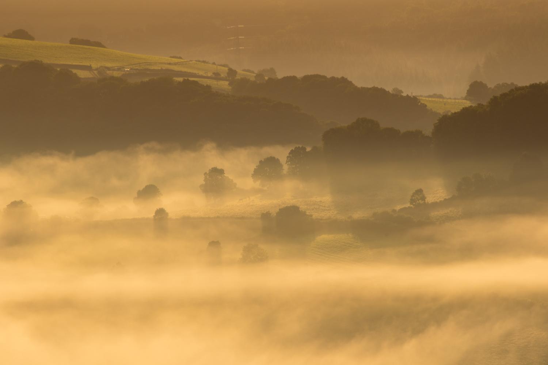Mist LR (6 of 8).jpg