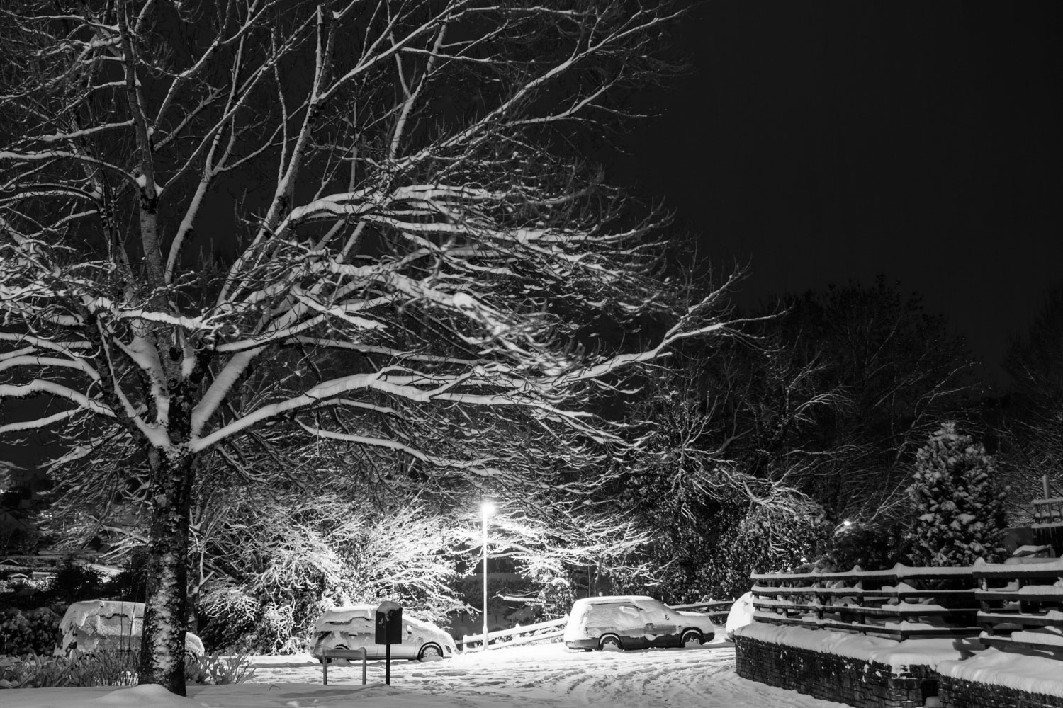 Snow day evening LR (2 of 6).jpg