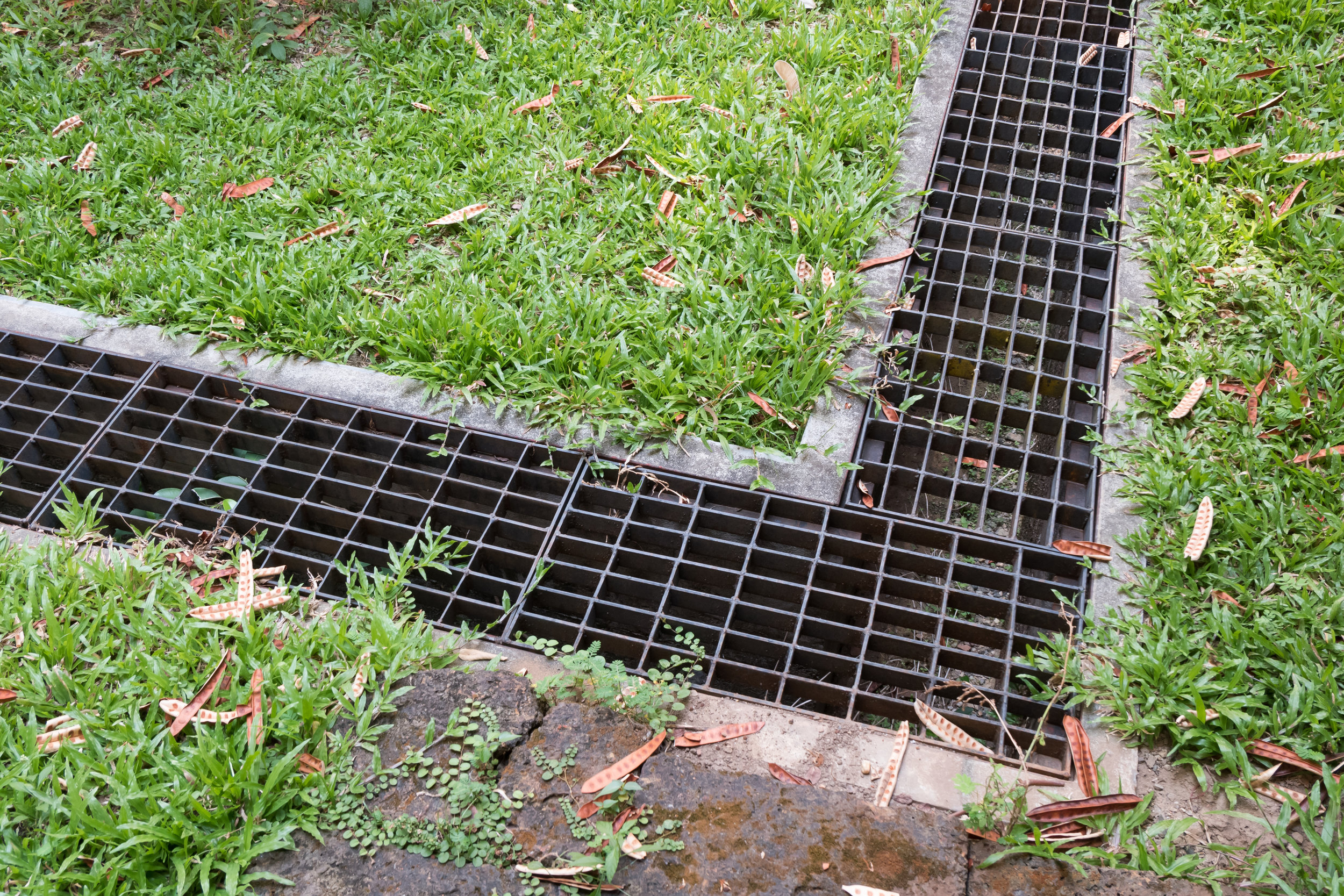 How Hiring a Drainage Company Can Help You Avoid a Major Septic Emergency and Save You Money in Chappaqua, NY
