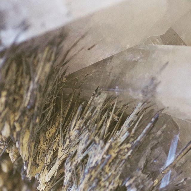 ◼ Barite needles in quartz ◼  #natgeo #splendid_earth #earthfocus #pixel_ig #awesomeearth #picoftheday #minerals #crystallove #stones #gemology #crystals #beautiful #igdaily #fineminerals #love #gem #gems #crystal #igers #instagood #gemsandminerals #mineralogy #naturalstones #rawgems #rawstones #geology #follow4follow