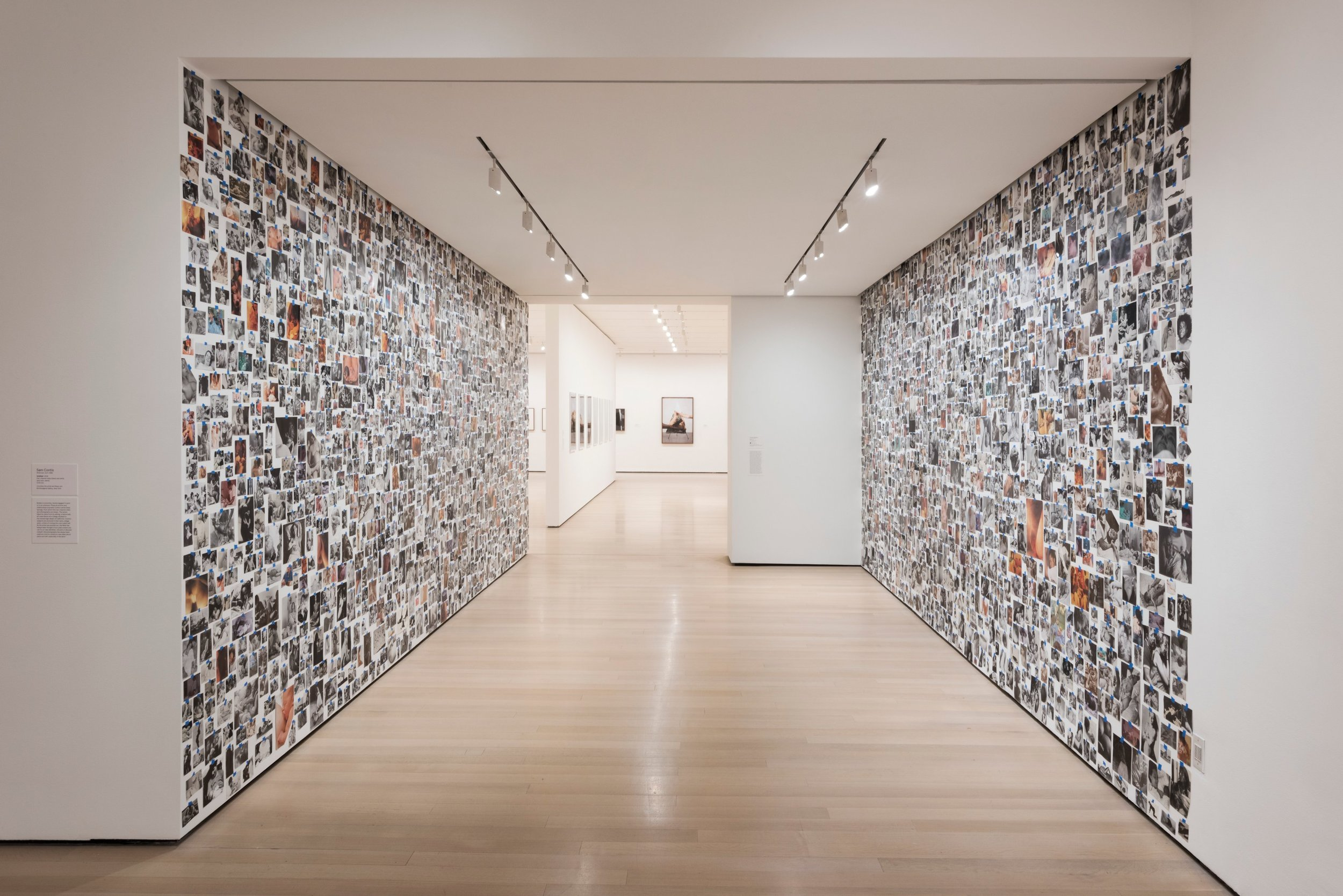 Photograph of the installation  My Birth  by Carmen Winant in MoMA in 2018