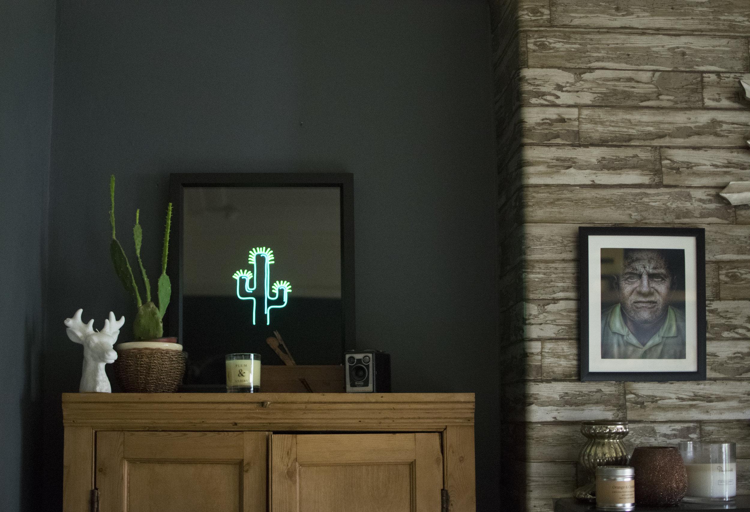 My Cactus neon