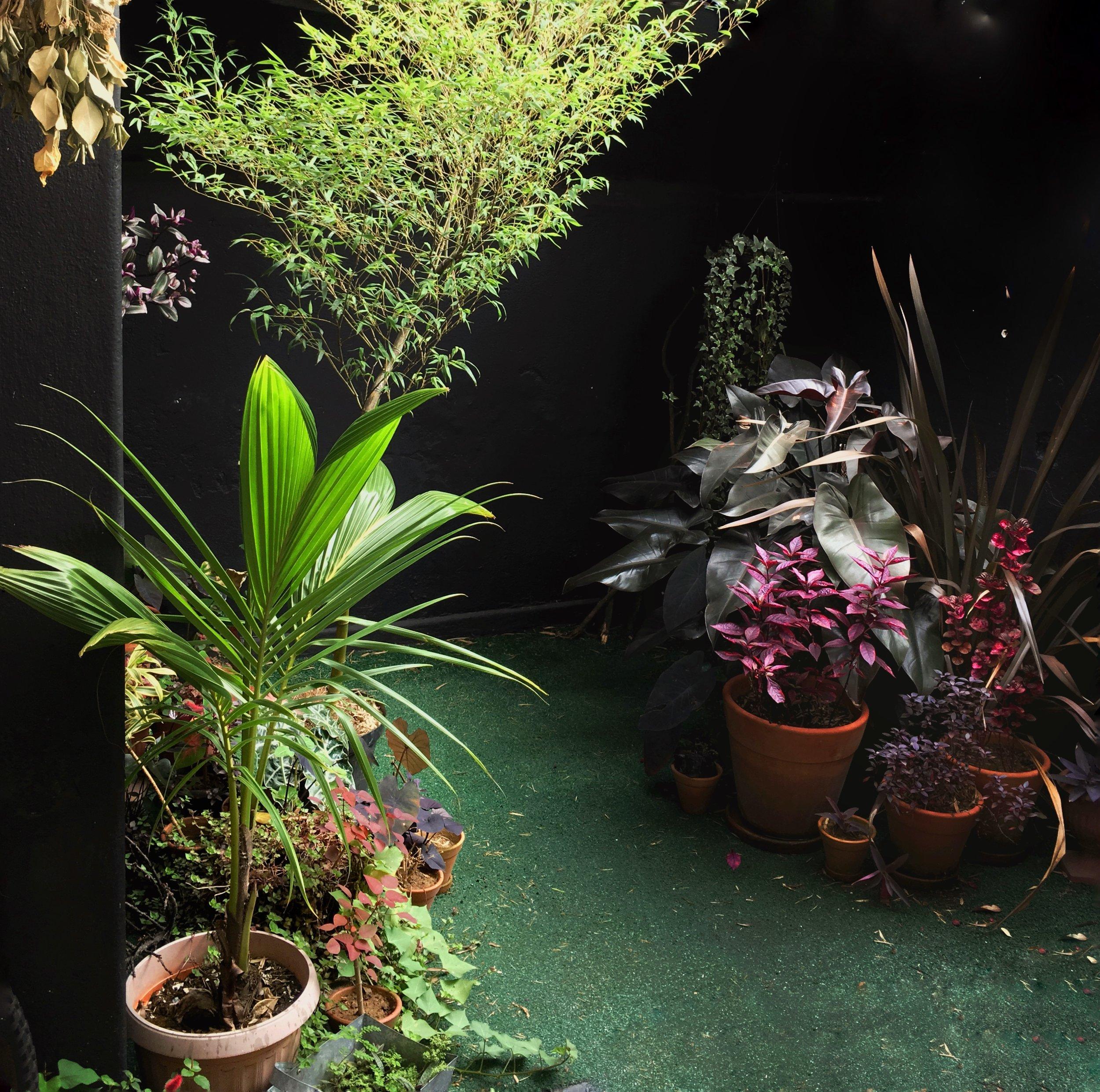 19-new-garden.jpg
