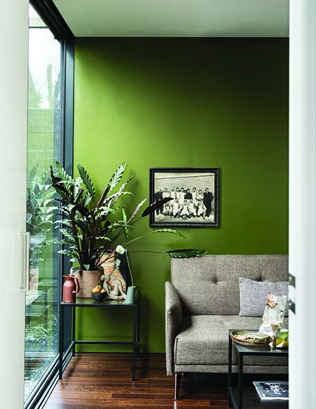 Bancha Paint Colour