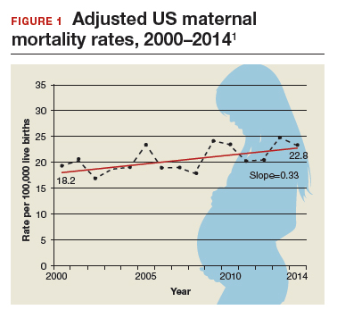 https://www.mdedge.com/obgyn/article/159665/practice-management/factors-critical-reducing-us-maternal-mortality-and