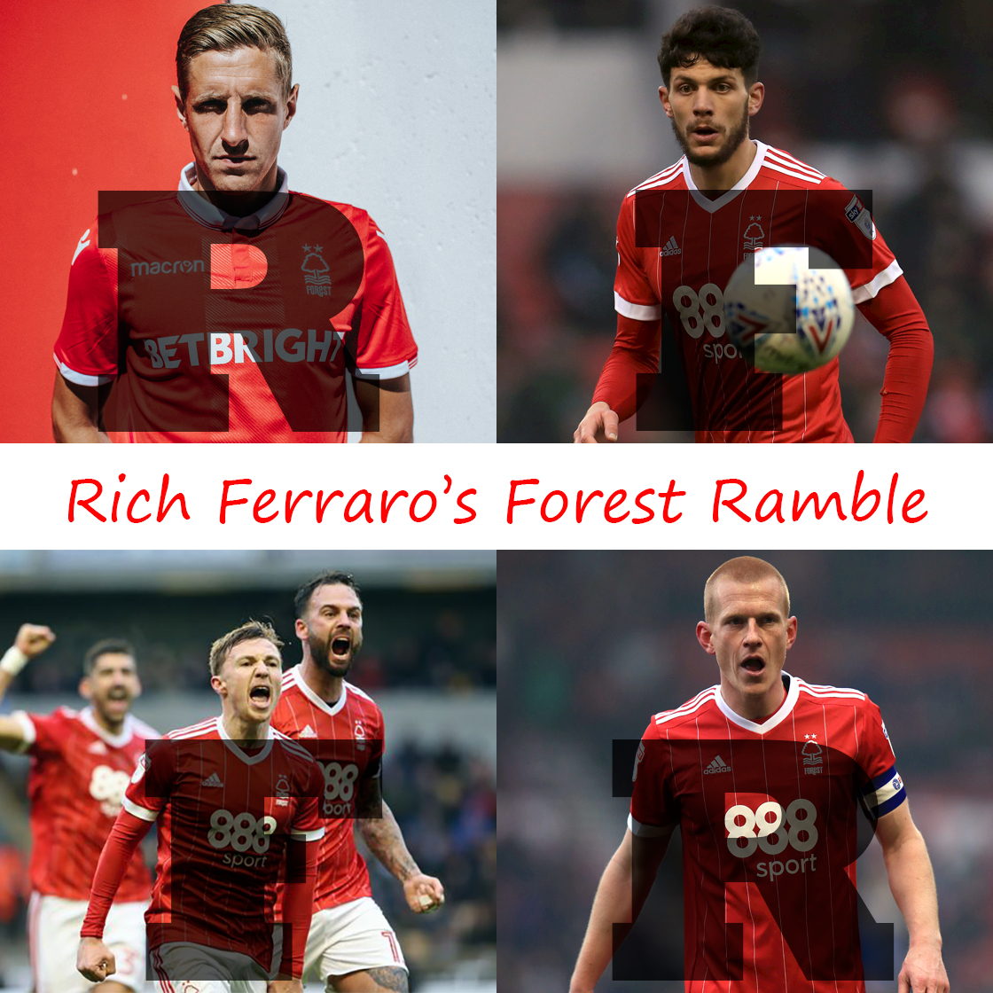 Rich Ferraro's Forest Ramble