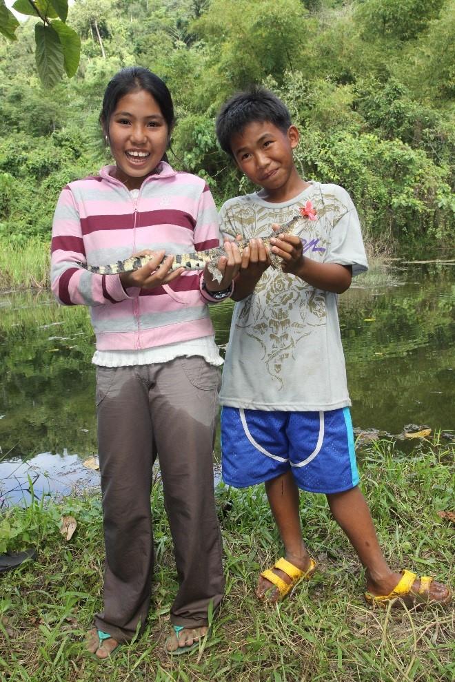 Philippine Crocodile 1.jpg
