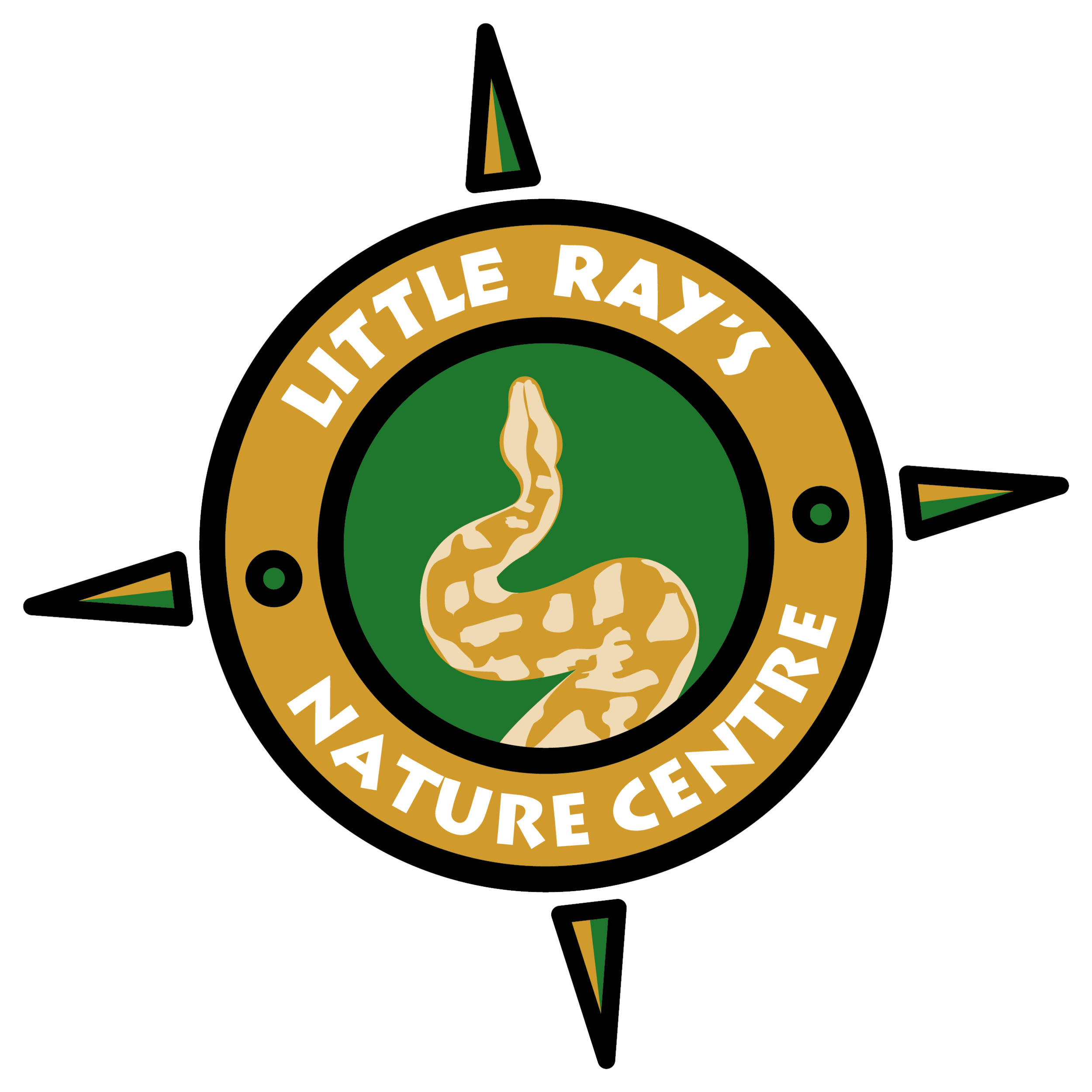 LITTLE_RAYS_NC-no-white-border.png