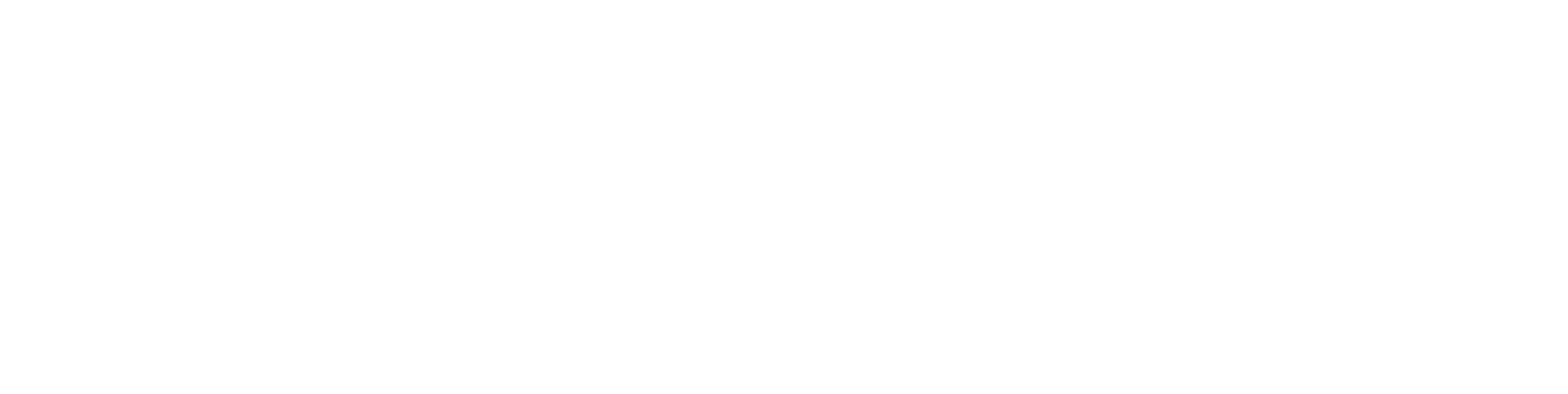 nfa-logo-web.png
