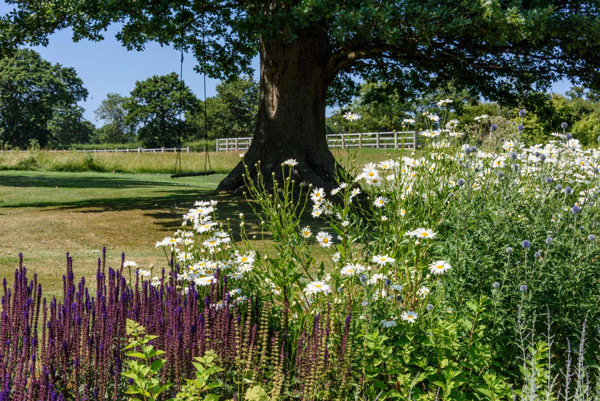 Andy Scott photography gardens 01