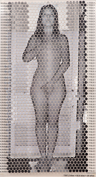 7300 días, del proyecto Ábacos (7300 Days, from the project Abacus), 2005. Plexiglass, serigraph. 61 3/8 x 33 x 3/4 in.
