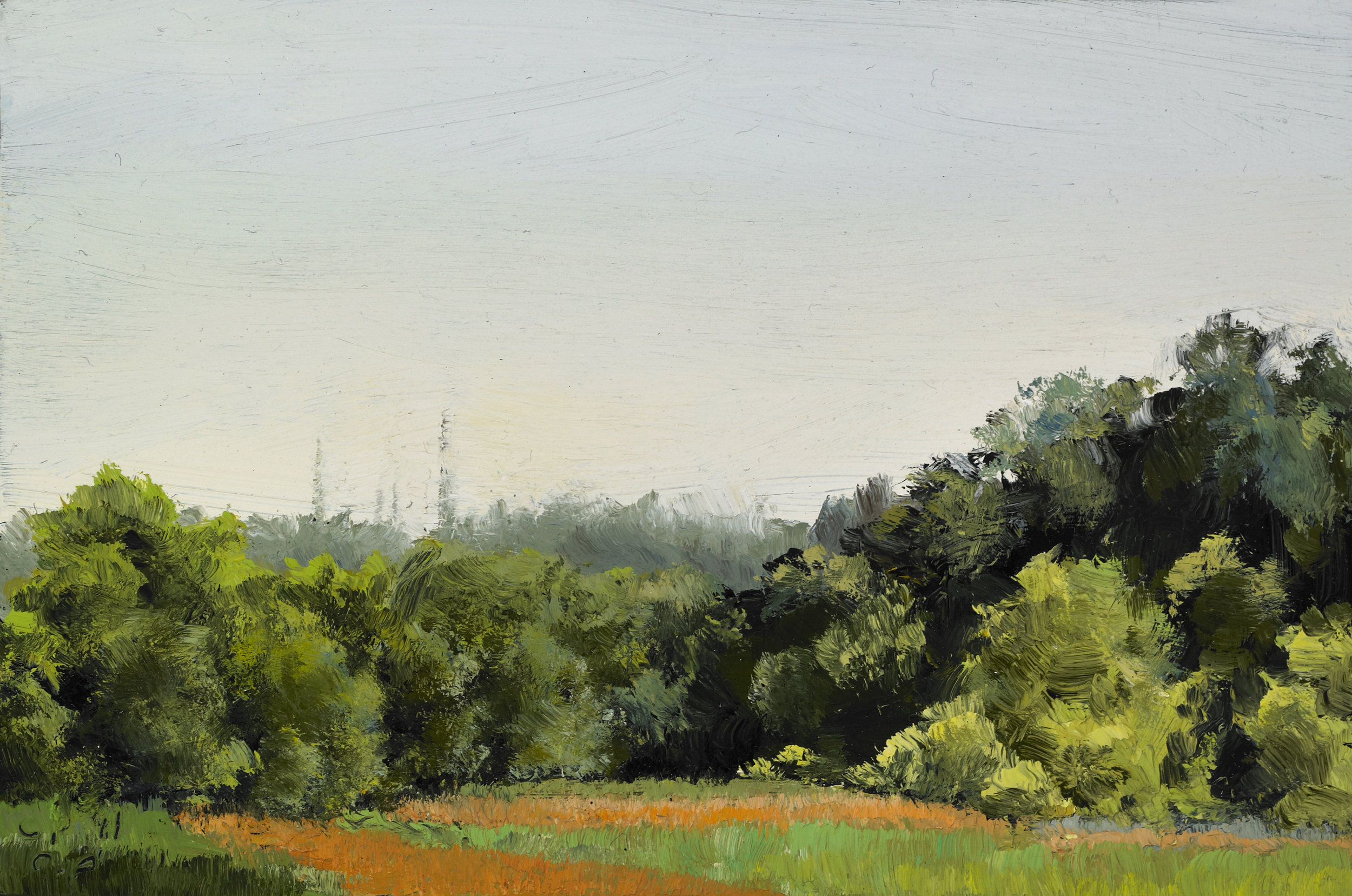 """Summer Field , Oil on Wood Panel, 2011, 3 1/2"""" x 5 1/4""""   private collection"""