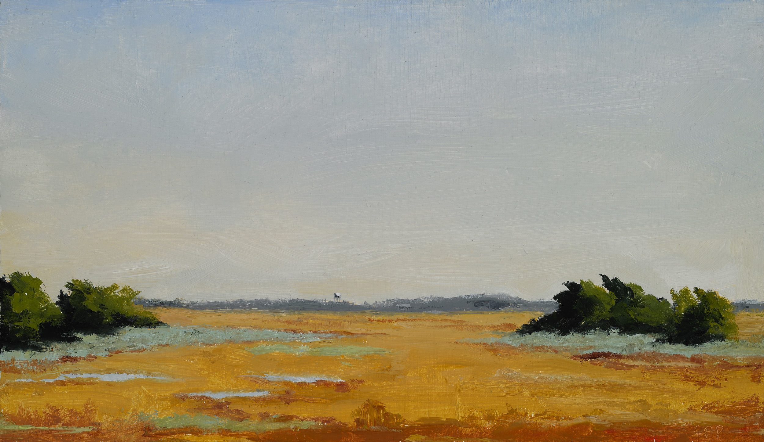 "Marsh, Sullivan's Island , Oil on Wood Panel, 2010, 8 1/4"" x 14 1/4"""