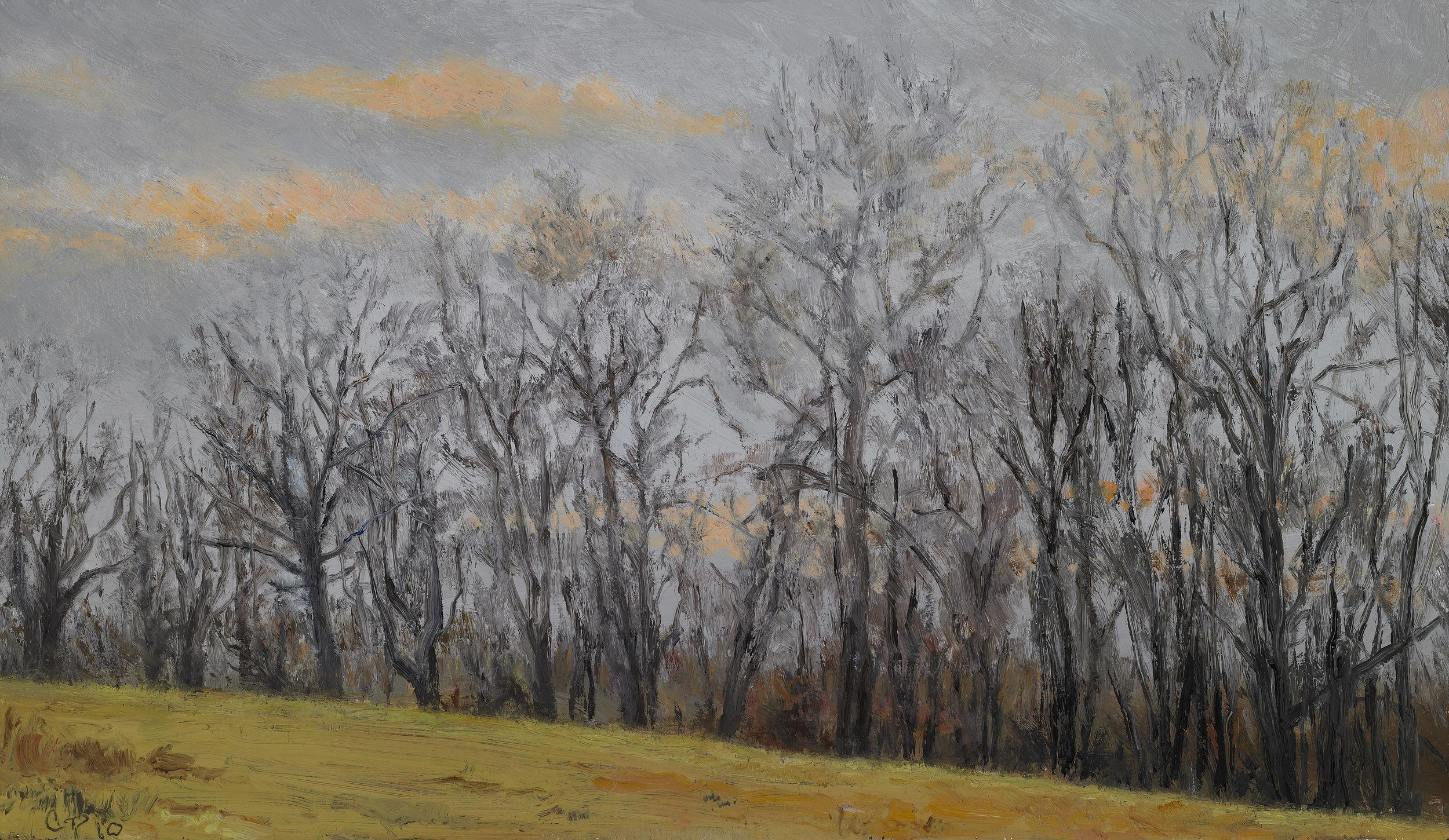 """Tree Line , Oil on Wood Panel, 2010, 8 1/4"""" x 14 1/4"""""""