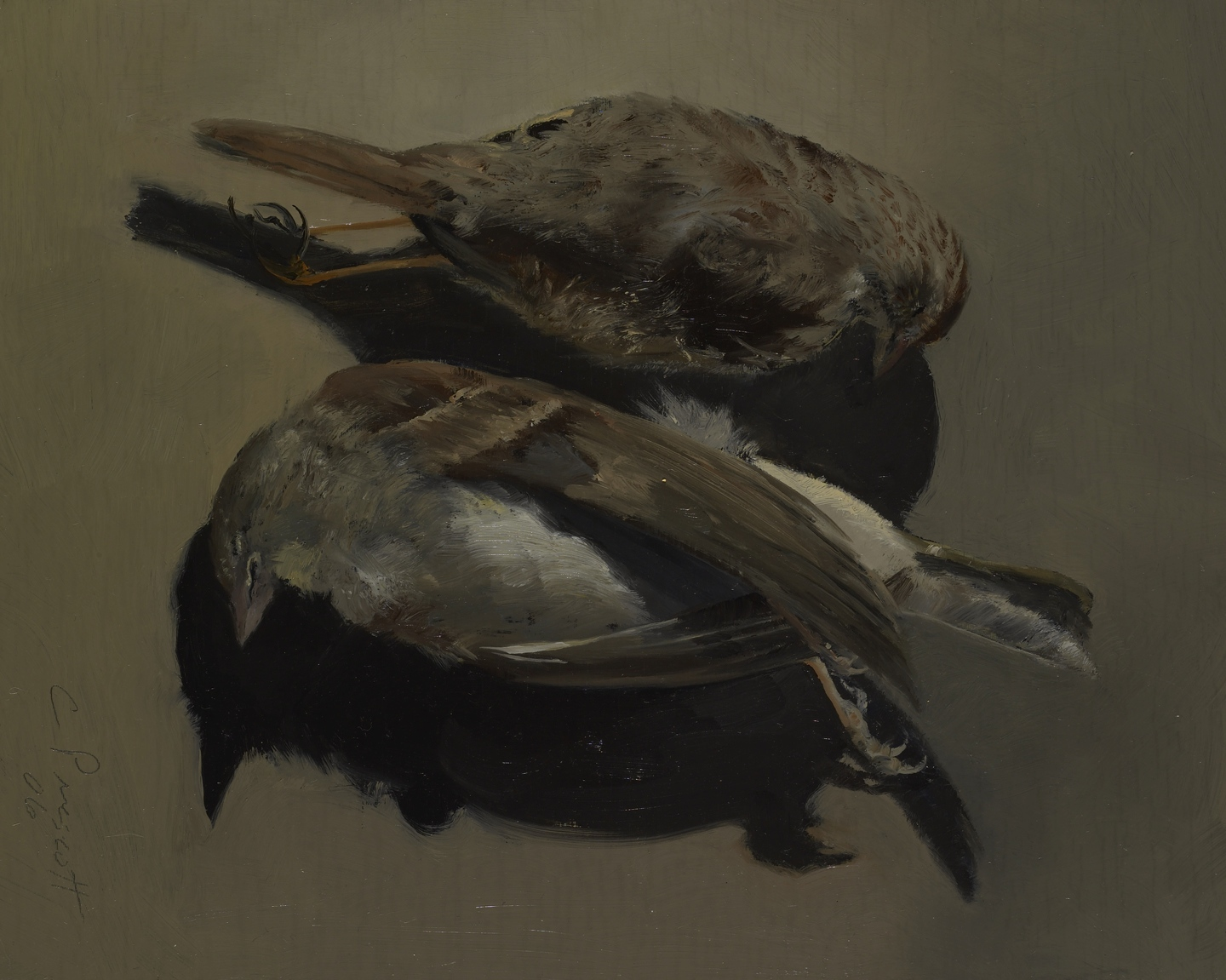 """Two Brown Birds , Oil on Wood Panel, 2006, 10"""" x 8"""""""