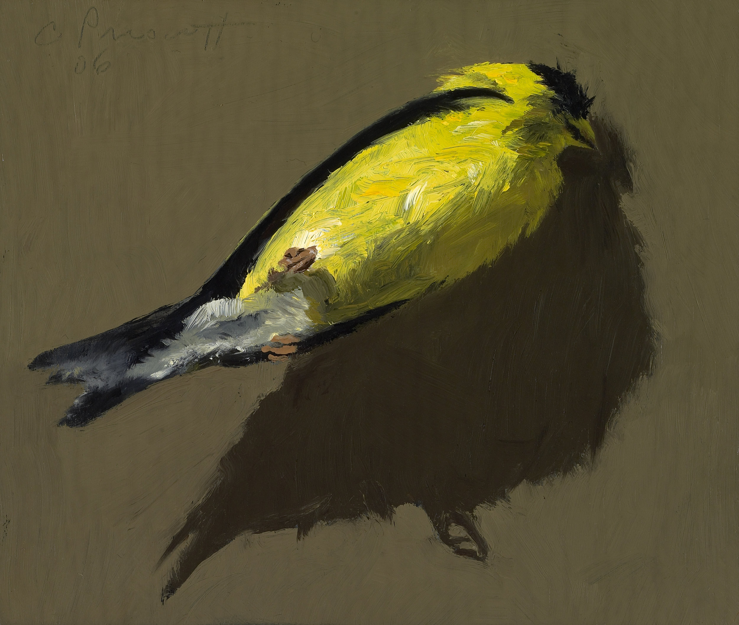 """Goldfinch , Oil on Wood Panel, 2006, 5"""" x 6"""""""