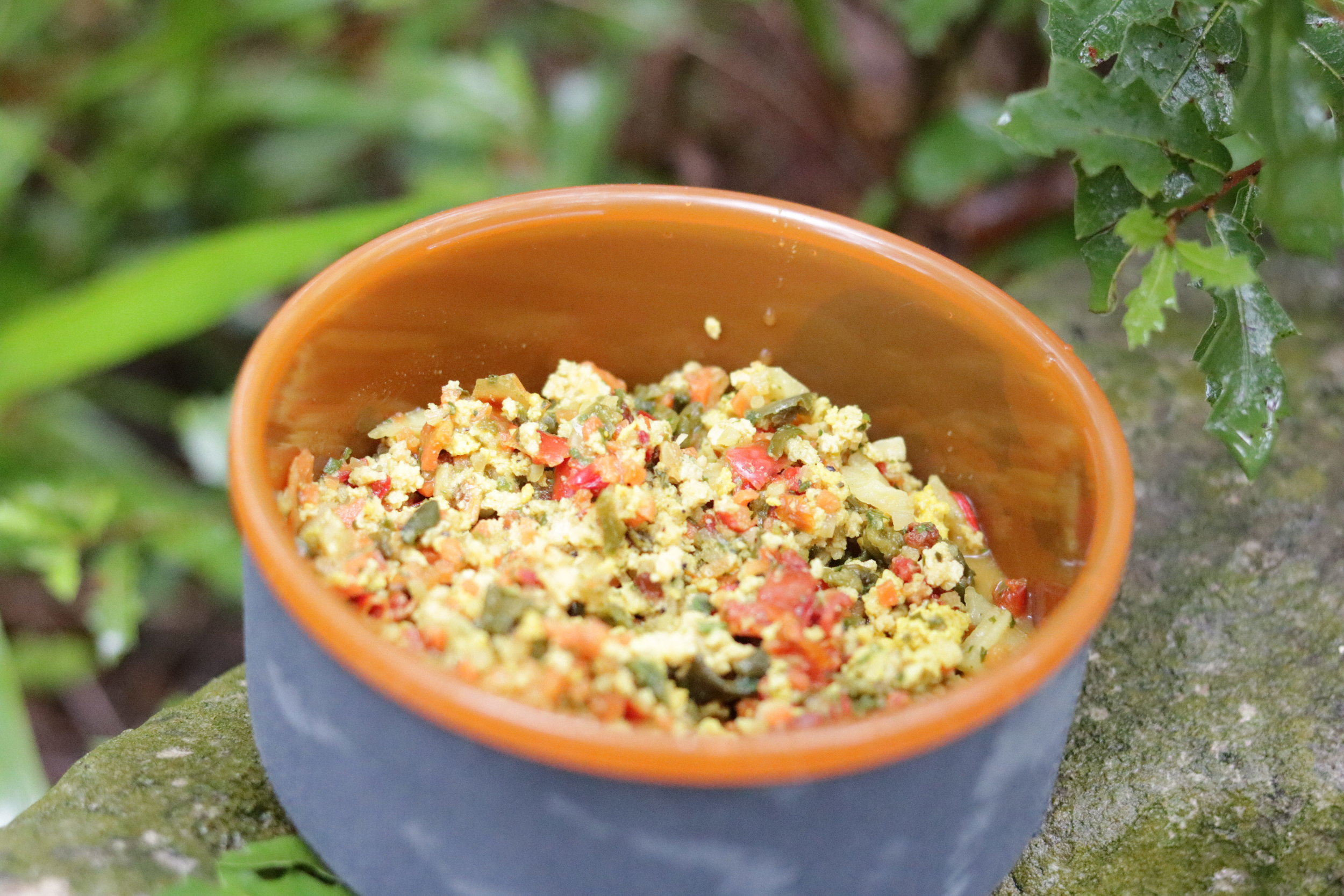 Dehydrated tofu scramble from Outdoor Herbivore