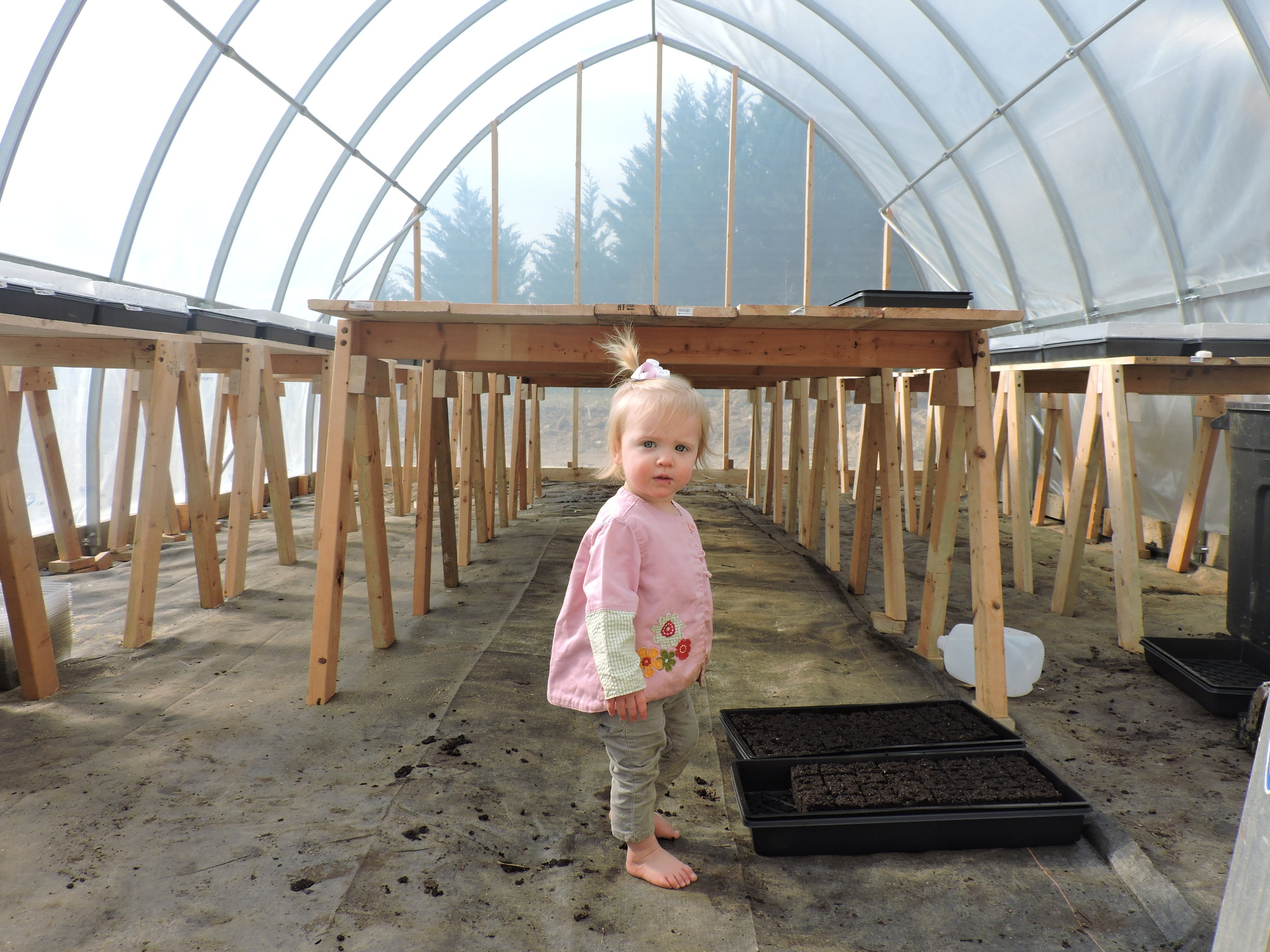 Edith in our first greenhouse.