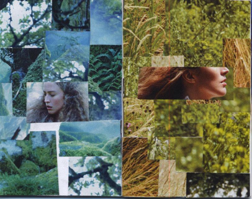 Vogue Decomposed1.jpeg