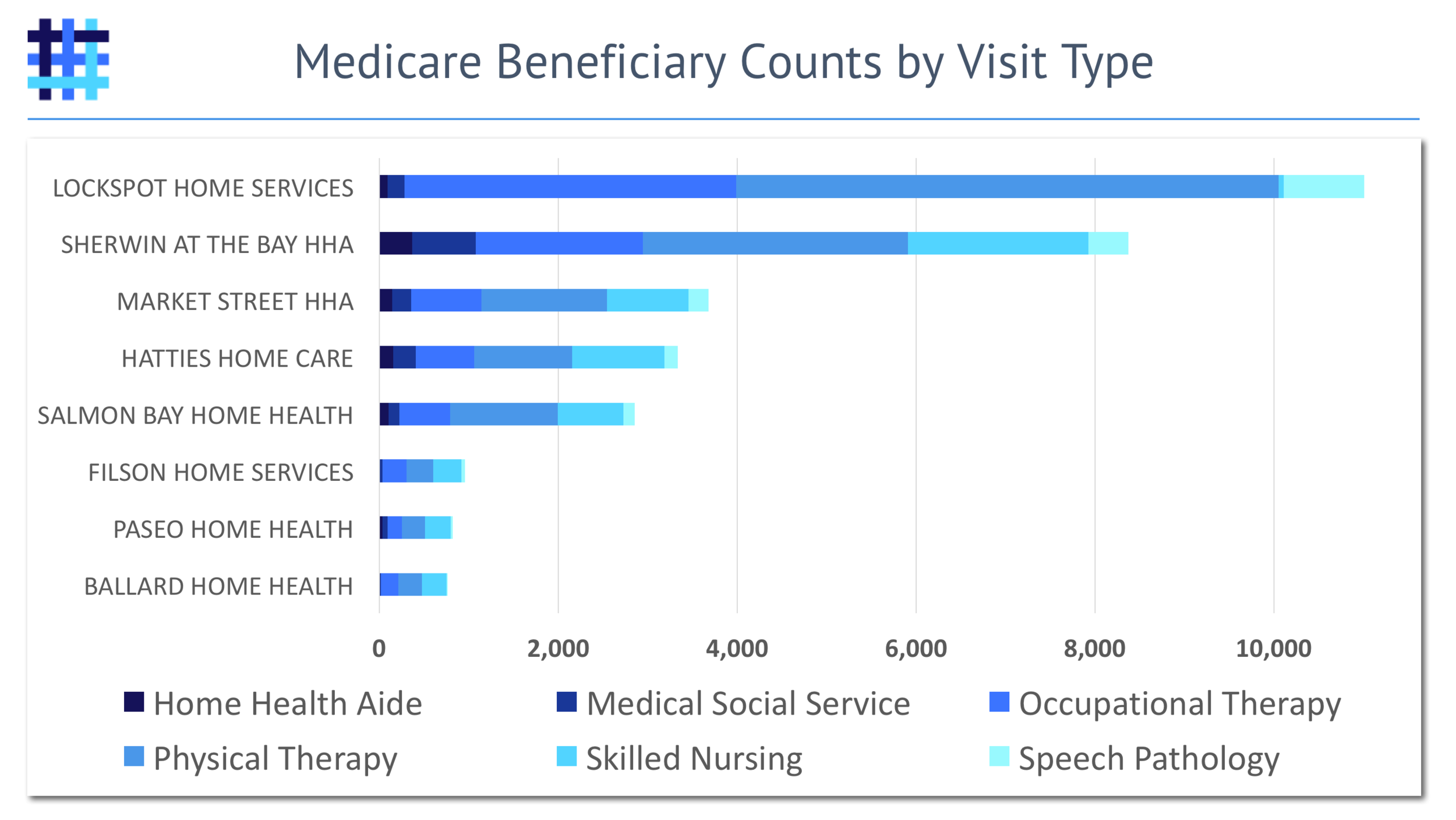 Home Health Agency (HHA) Medicare Beneficiary Visits by Type