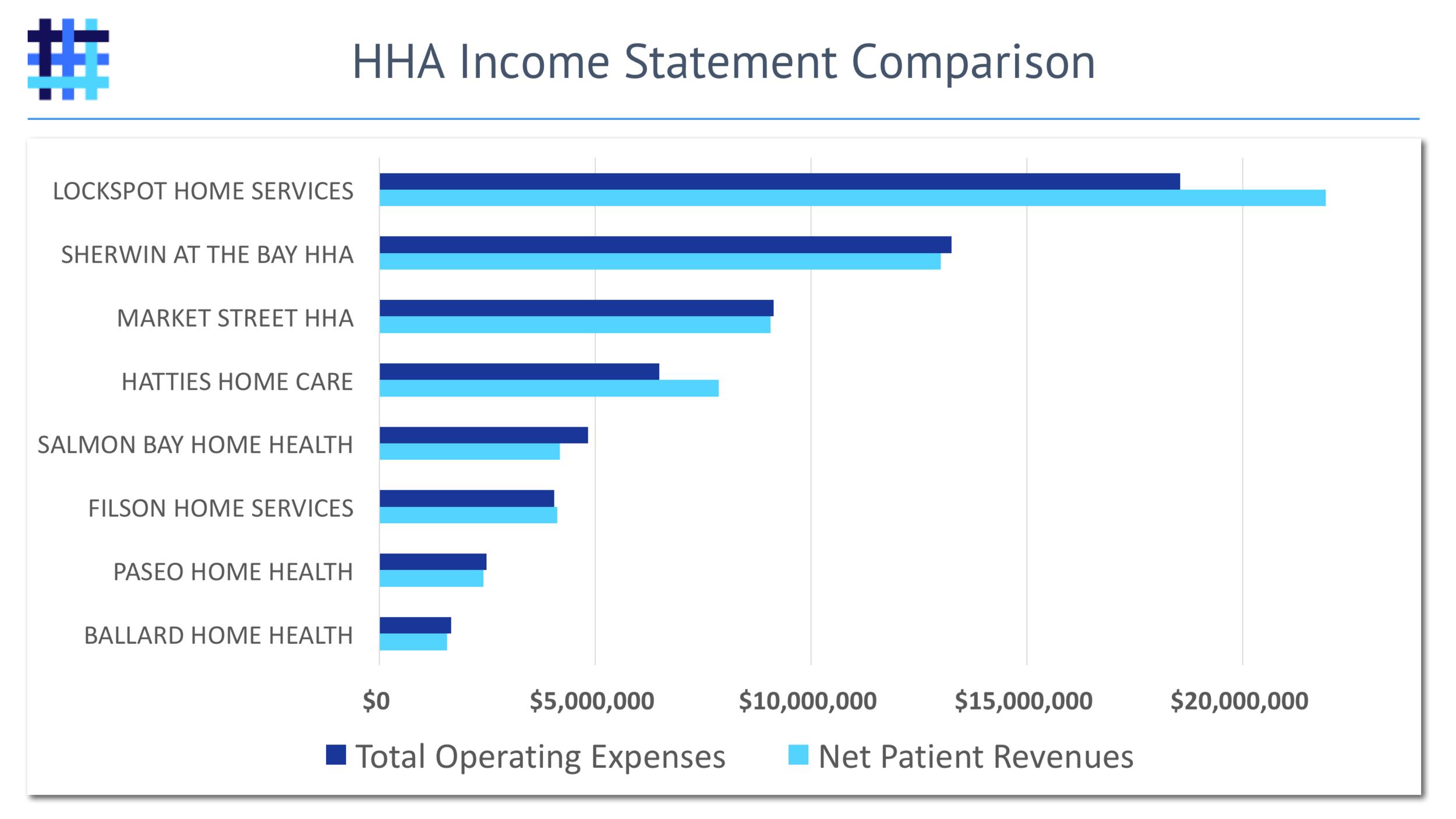 home-health-agency-hha-revenue-expenses-income