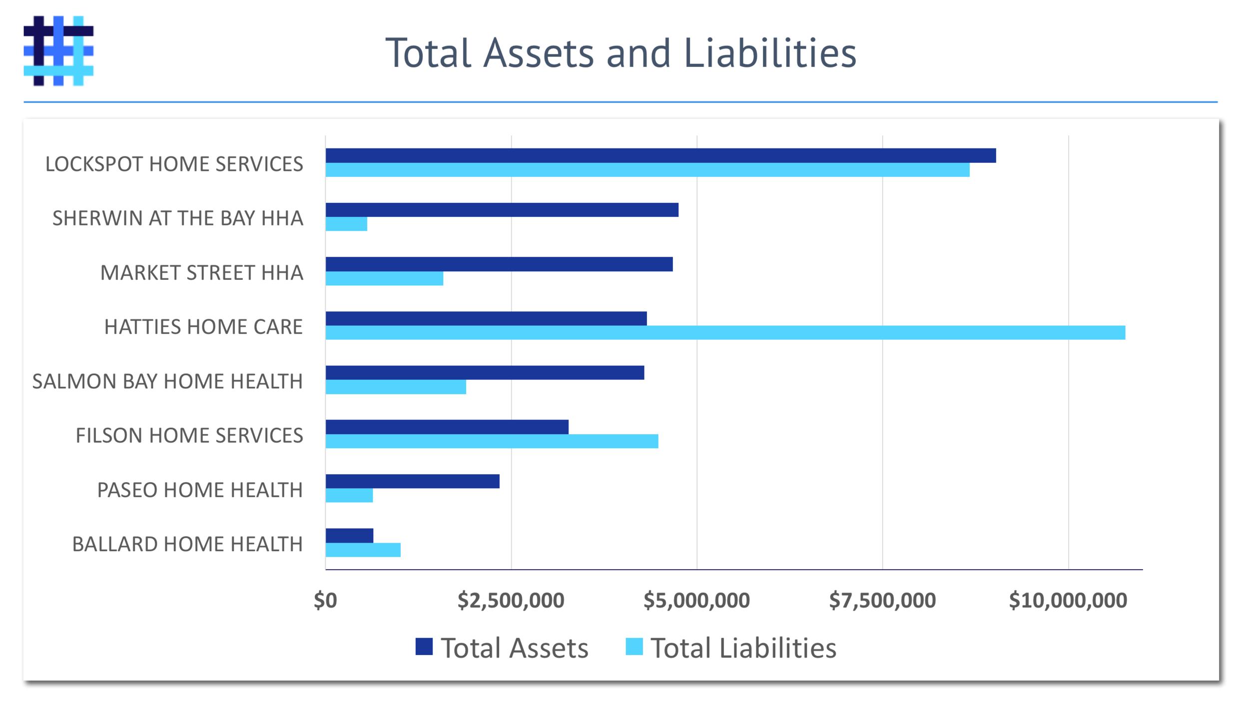 home-health-agency-hha-assets-liabilities