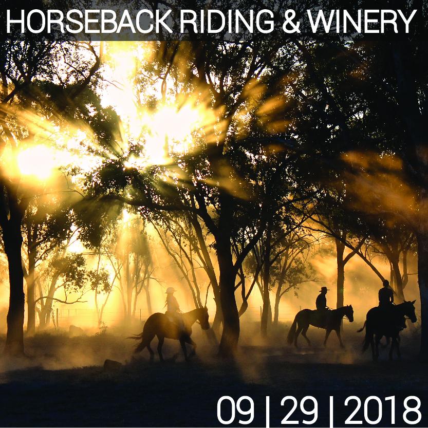 09_29_HORSEBACK_WINERY-01.jpg