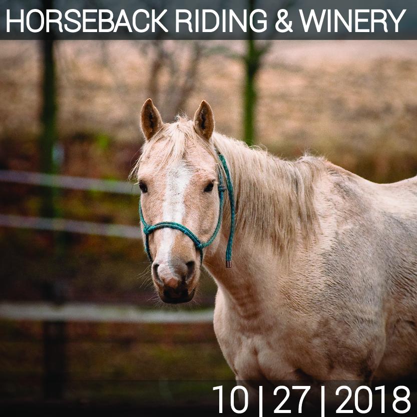 10_27_HORSE_WINE-01.jpg