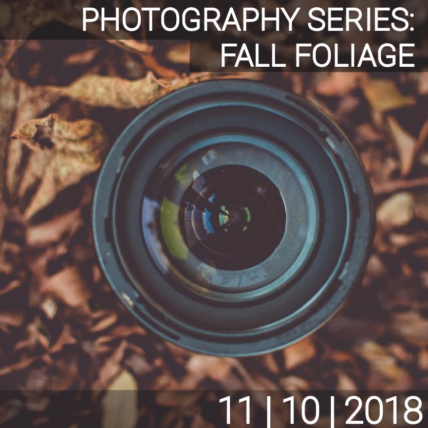 11_03_Photo_Fall Folliage_photo-01.png