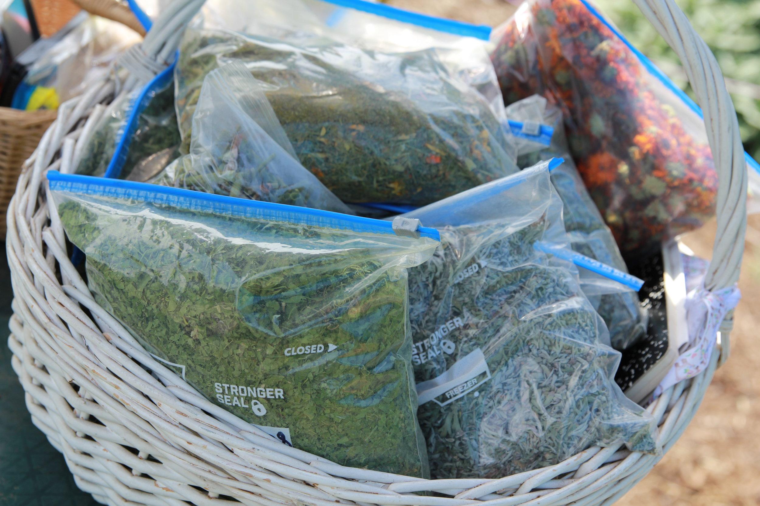 basket of herbs.JPG
