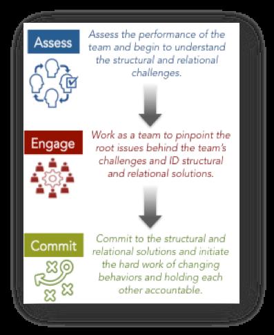 RI Leadership Team Development Approach
