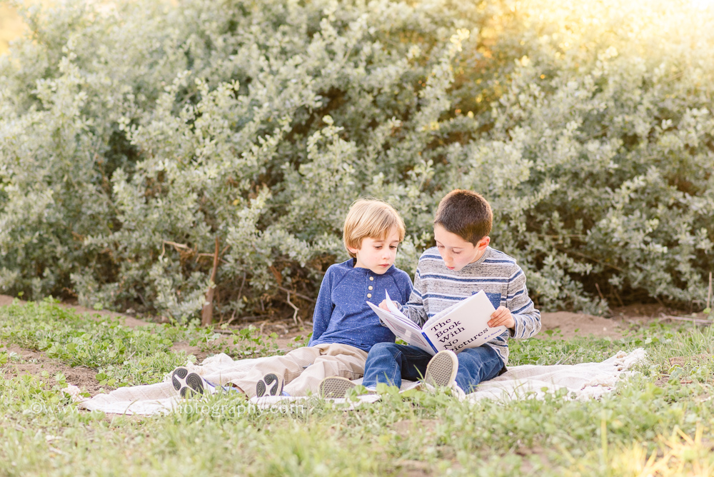 brothers reading in the forest
