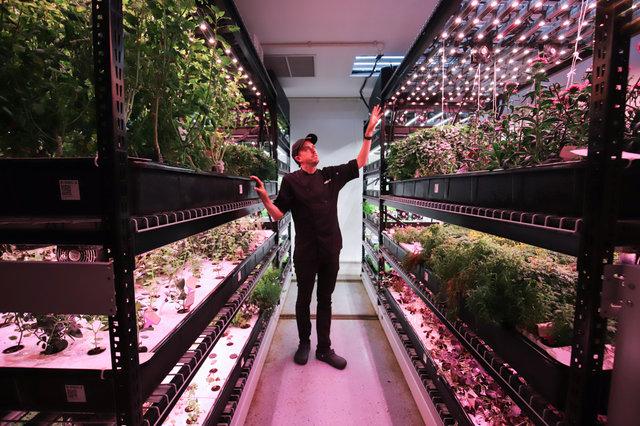 http://gothamist.com/2018/11/30/farm_one_tribeca_photos_garden.php