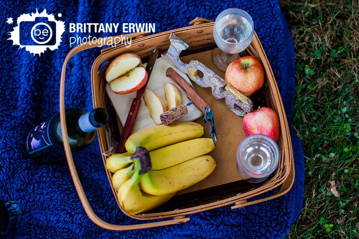 Indianapolis-elopement-photographer-picnic-after-ceremony-with-toasting-glasses.jpg