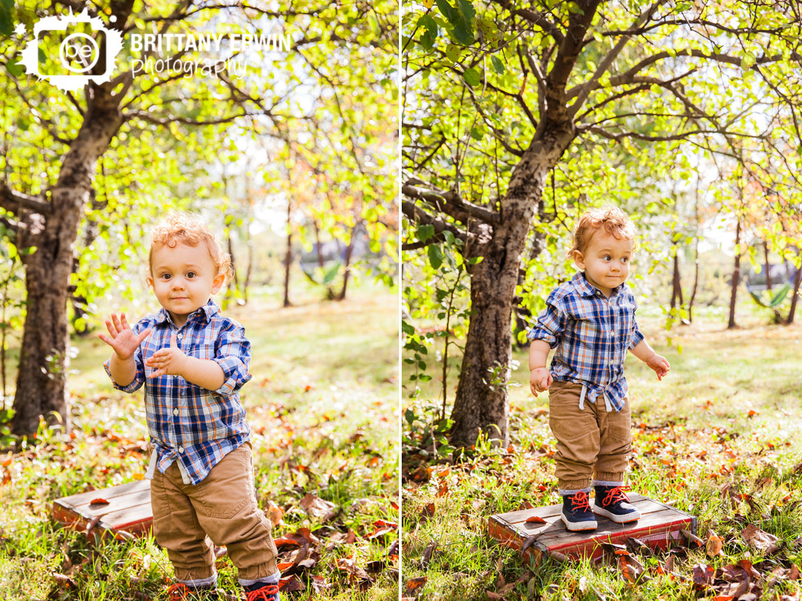 Indianapolis-fall-portrait-photographer-apple-tree-antique-box-toddler-boy-Brittany-Erwin-Photography.jpg