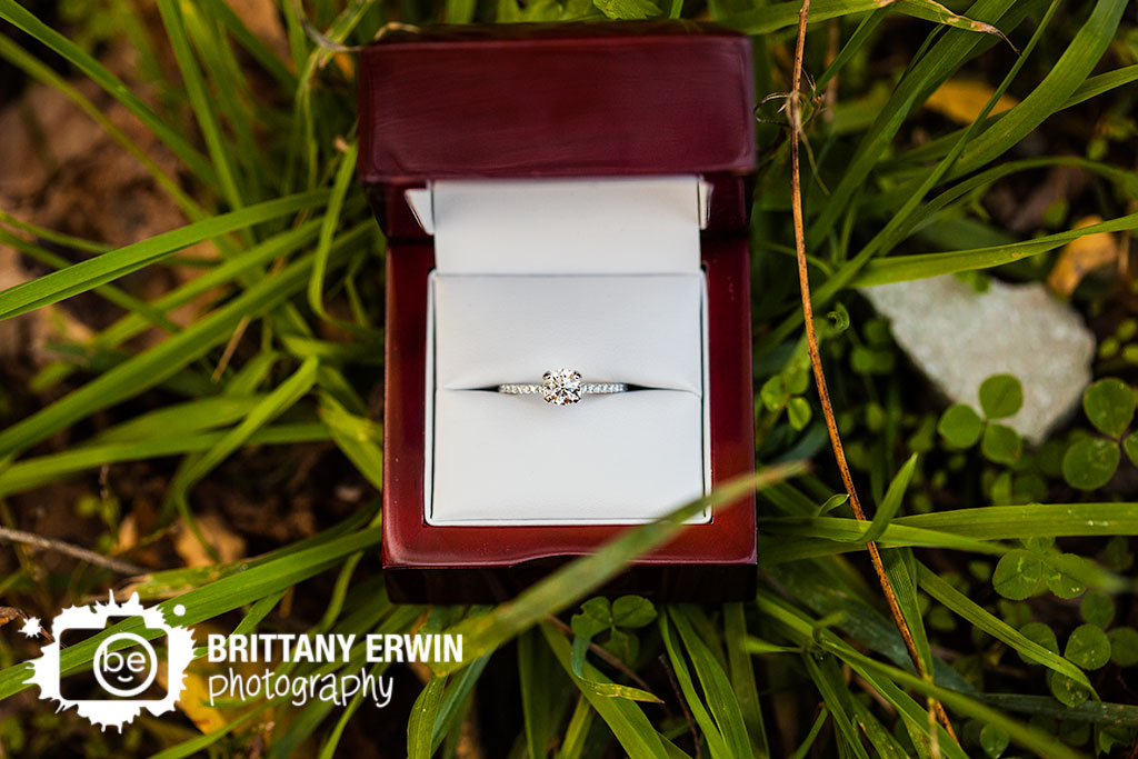 Indianapolis-museum-of-art-100-acres-park-proposal-ring-box-detail-engagement.jpg
