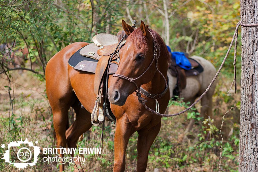 Story-Inn-wedding-photographer-horse-at-venue.jpg