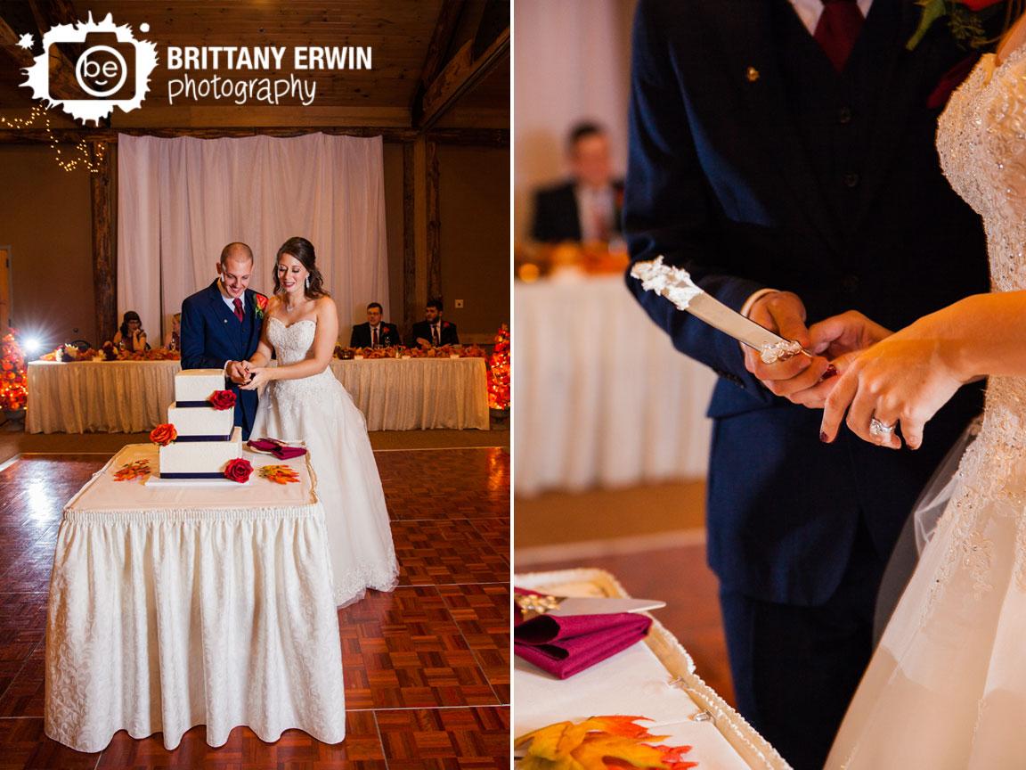 Noblesville-Indiana-wedding-photographer-cake-cutting-knife-couple.jpg
